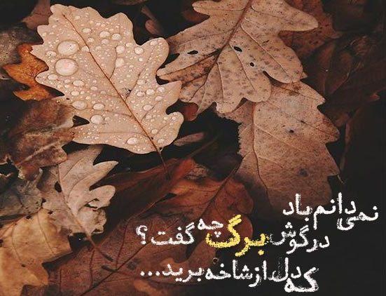 متن و شعر پاییزی
