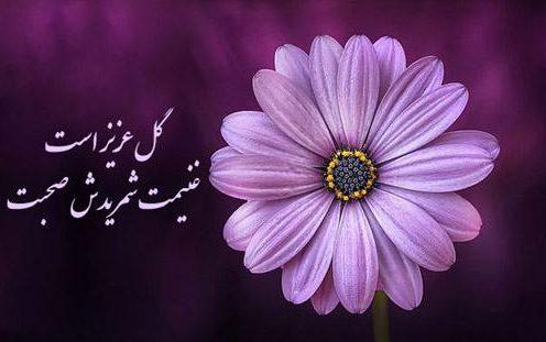 جملات زیبا در مورد گل با اشعار کوتاه در مورد زیبایی گل